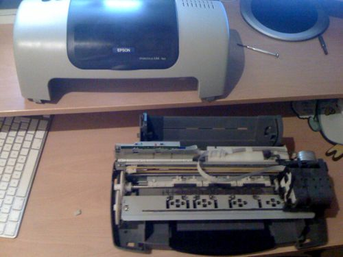 EPSON C44 PLUS AND DRIVER FOR MAC